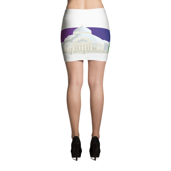 St. Paul Skirt Winter