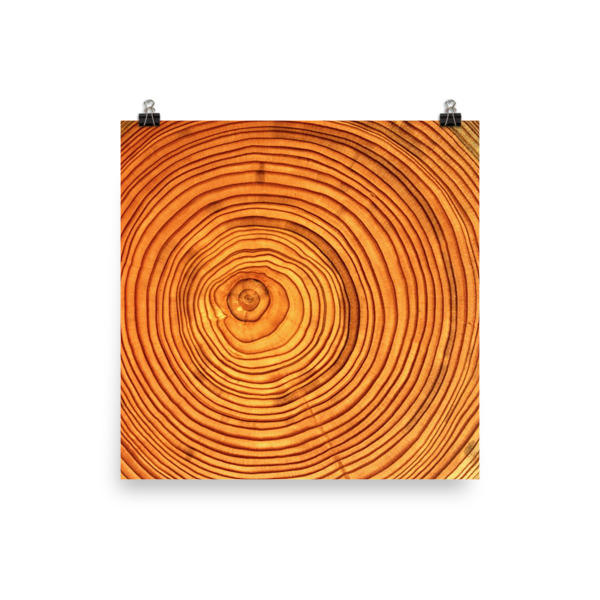 Cabin Cloth Poster Wood