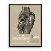 Cortisone Poster Framed