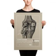 Cortisone Poster Canvas