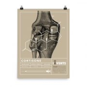 Cortisone Poster